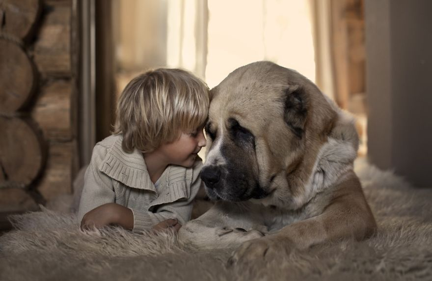 Когда собаки большие, а дети маленькие - 44 потрясающие фотографии - 2