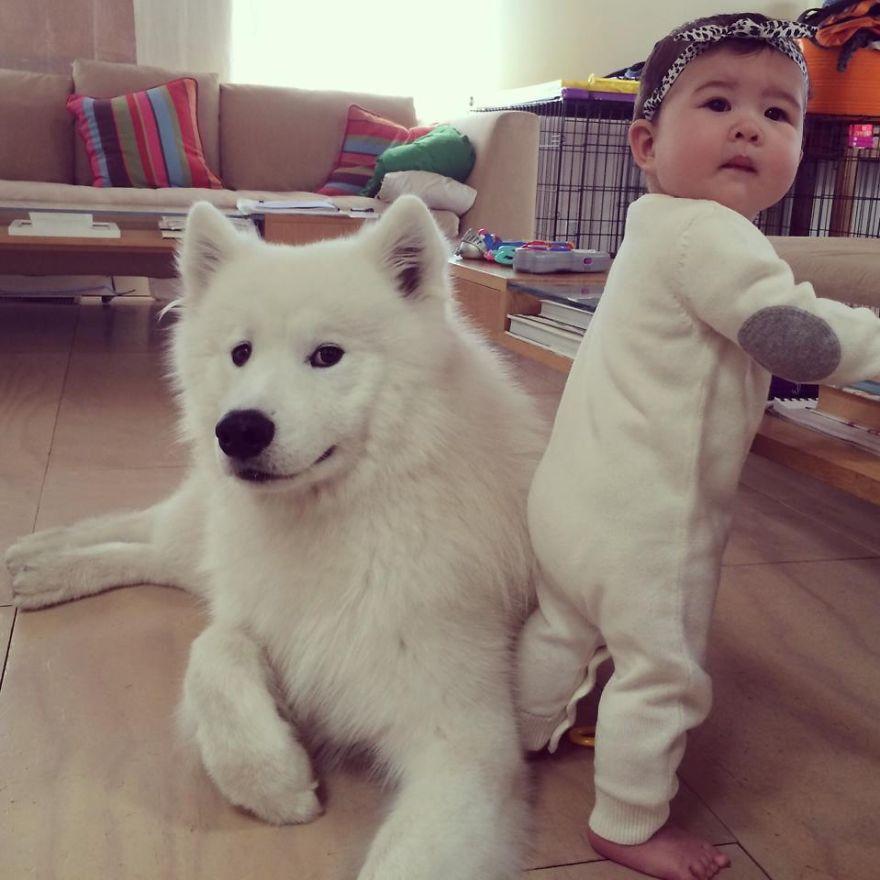 Когда собаки большие, а дети маленькие - 44 потрясающие фотографии - 22
