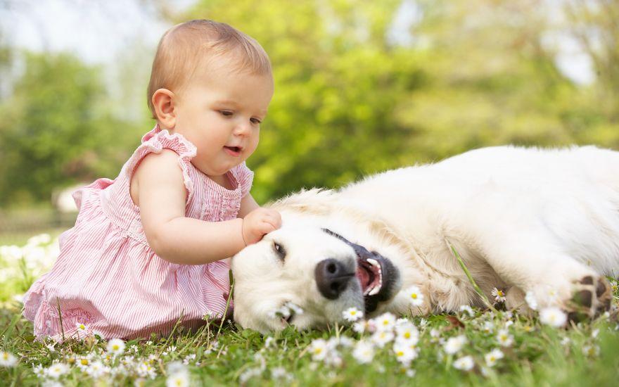 Когда собаки большие, а дети маленькие - 44 потрясающие фотографии - 26