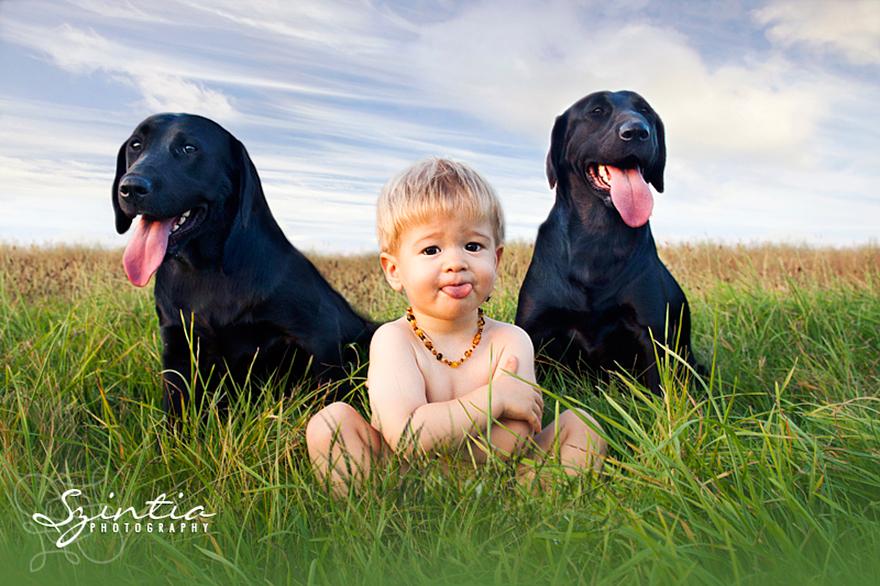 Когда собаки большие, а дети маленькие - 44 потрясающие фотографии - 27
