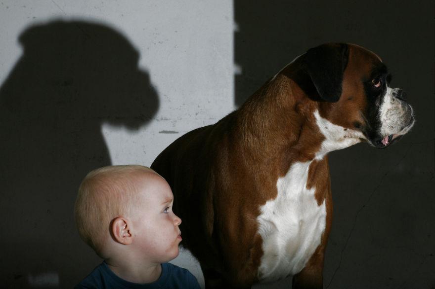 Когда собаки большие, а дети маленькие - 44 потрясающие фотографии - 40