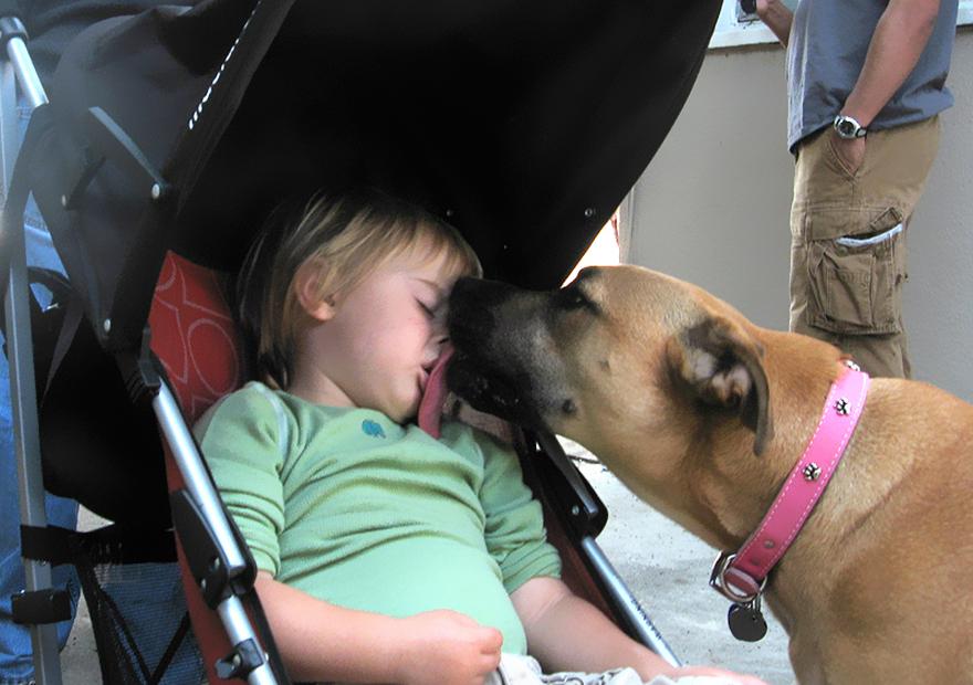 Когда собаки большие, а дети маленькие - 44 потрясающие фотографии - 41