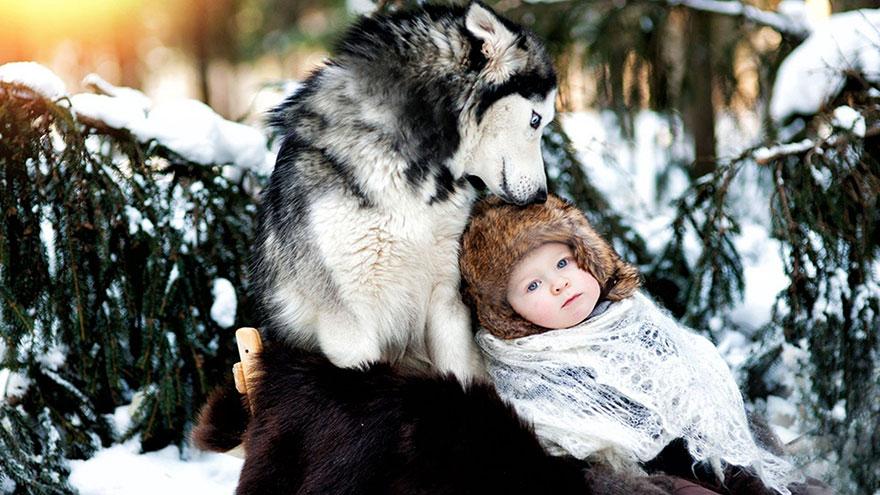 Когда собаки большие, а дети маленькие - 44 потрясающие фотографии - 7