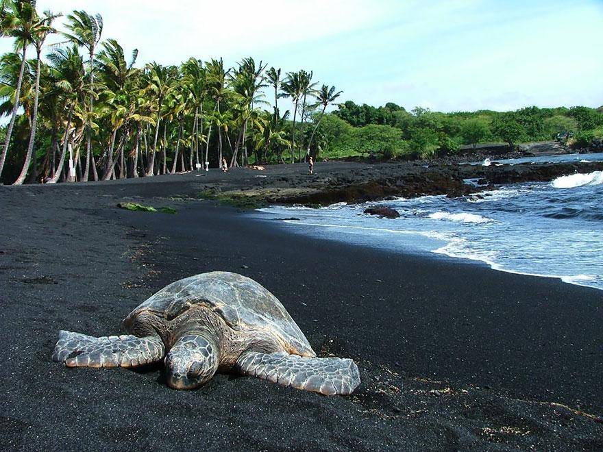 17 самых необычных пляжей со всего мира-6-2