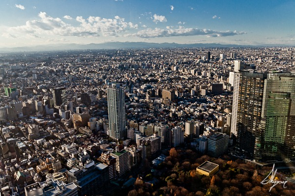The-Tokyo-View