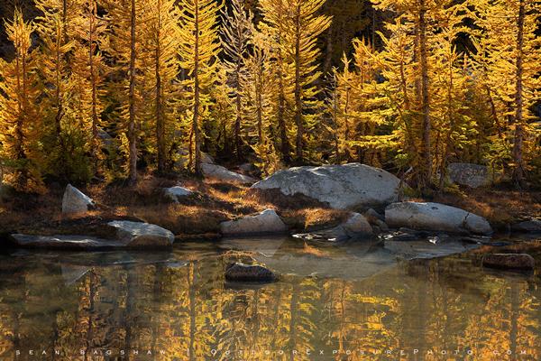 18-landscape photographers 19