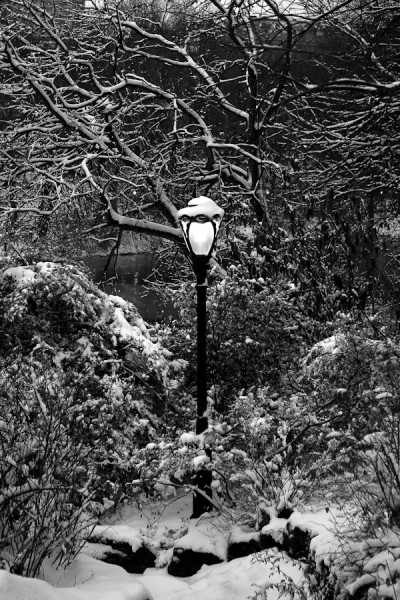 lamppost at dusk central park-400x600