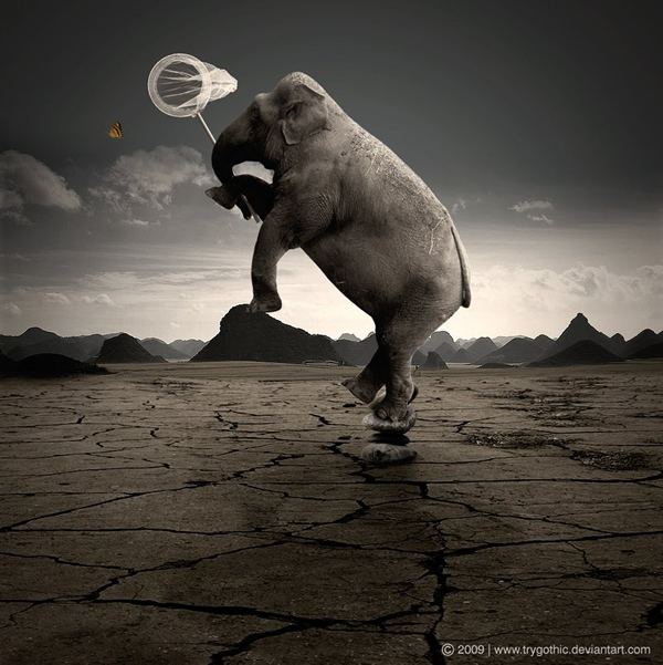 photo manipulations 18
