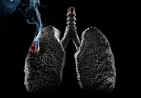 photo manipulations 26