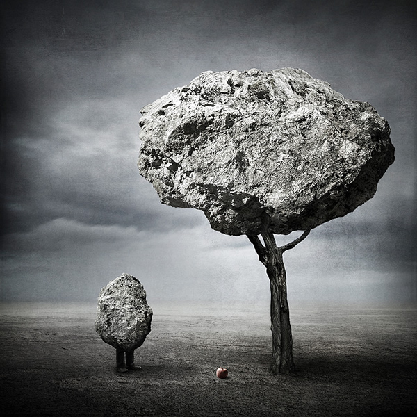 photo manipulations 42