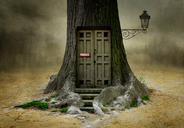 photo manipulations 52