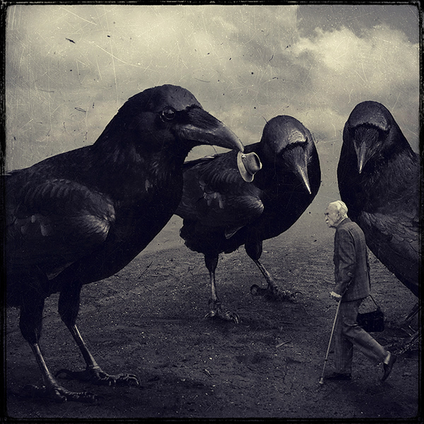 photo manipulations 64