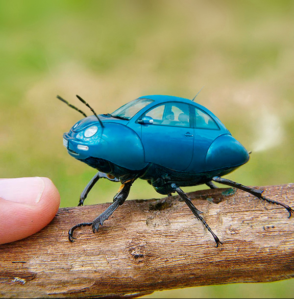 photo manipulations 67