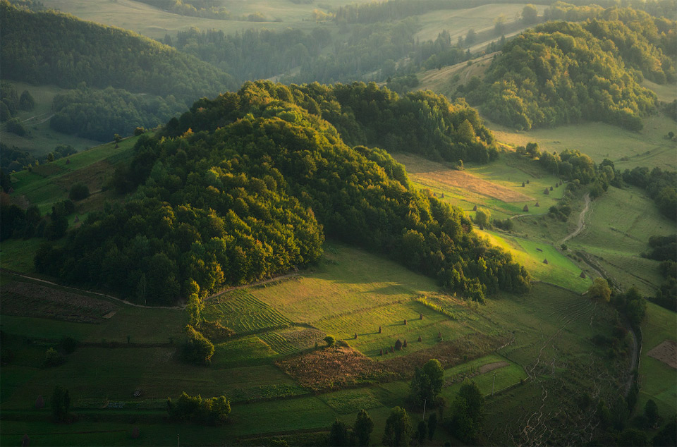 50hills-of-carpathians-mountains