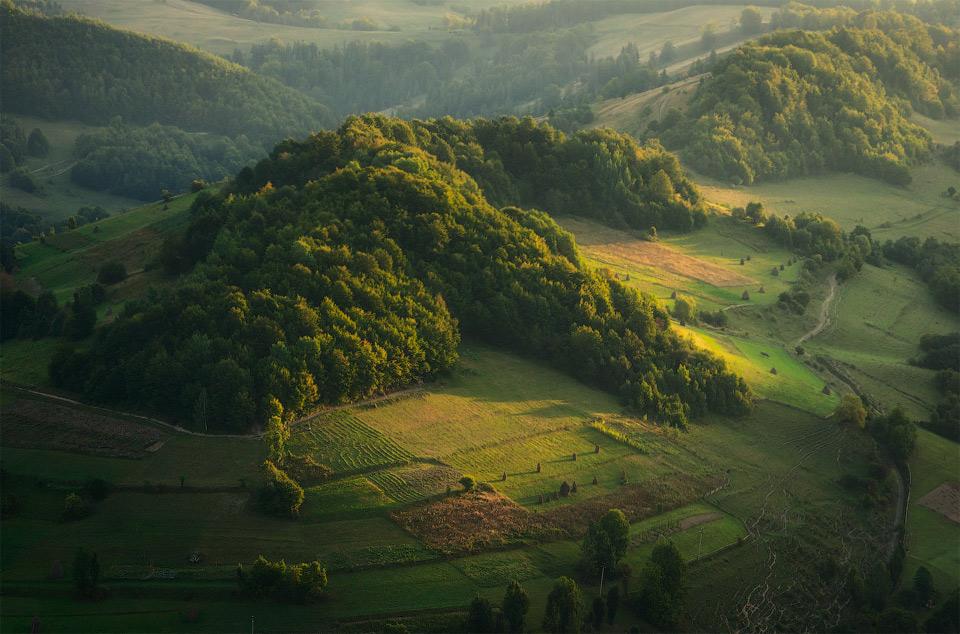 50hills-of-carpathians-mountains