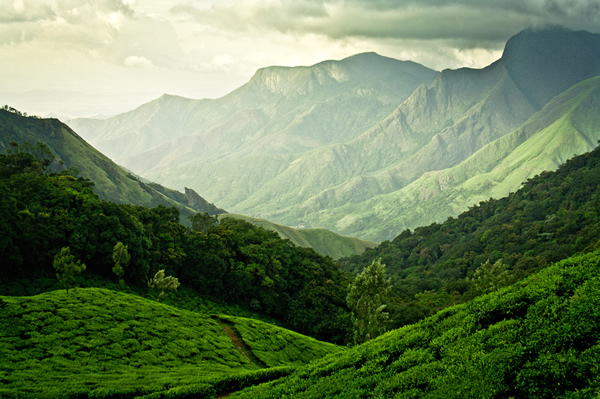Kerala – The Photographer's Own Country