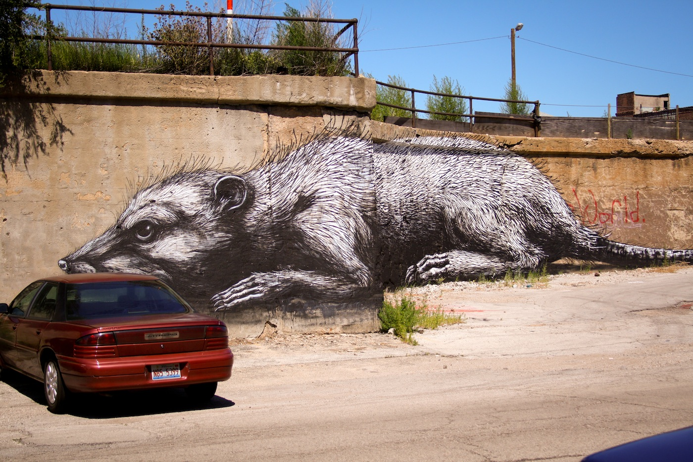 By ROA – In Pilsen, Chicago, USA