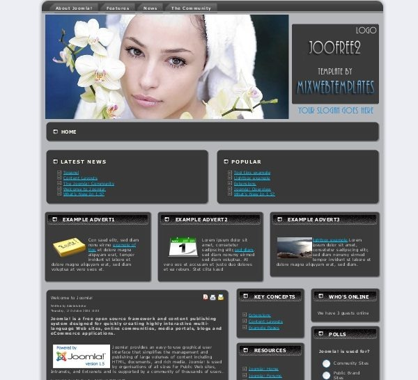 Mx_joofree3_health_beauty_joomla_template