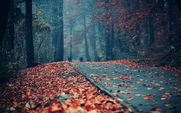 autumn_wallpapers_24