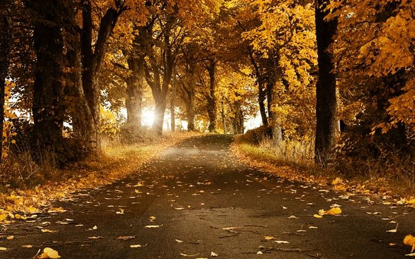 autumn_wallpapers_12