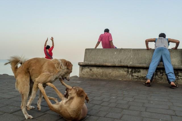 Николя Портнои: уличная фотография как джазовая импровизация