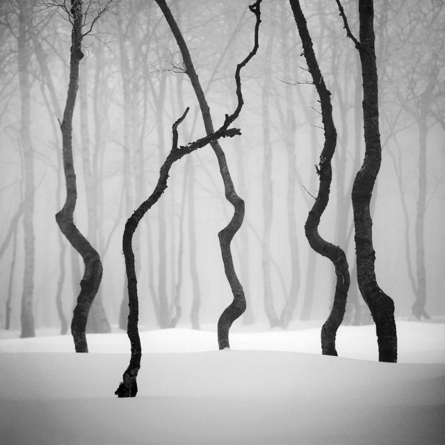 черно белые фотографии известных фотографов