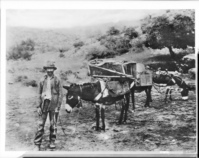 the history of california during What did forty-niners eat during the california gold rush the history kitchen discusses the food of this time period on pbs food.