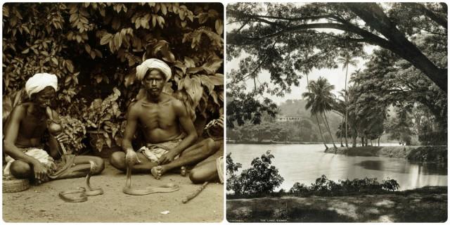 Редчайшие фотографии повседневной жизни Шри-Ланки в 1880-х годах