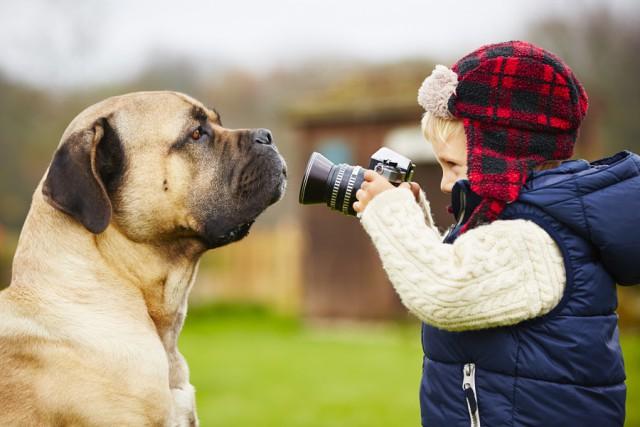 первые шаги начинающего фотографа