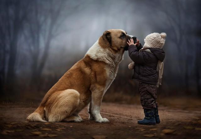 фотограф картинка для детей