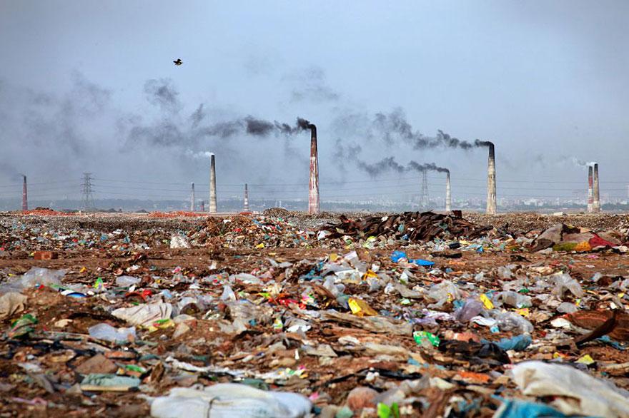 Экологические проблемы презентация картинки