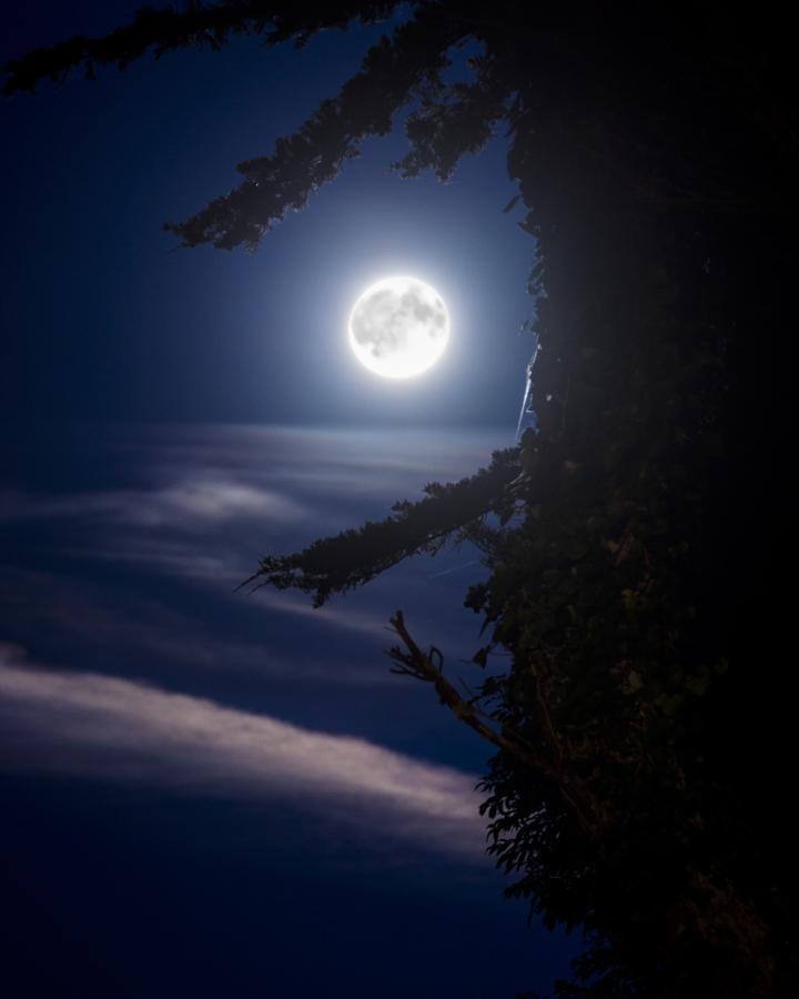 Ночные фото тбилиси развязалась