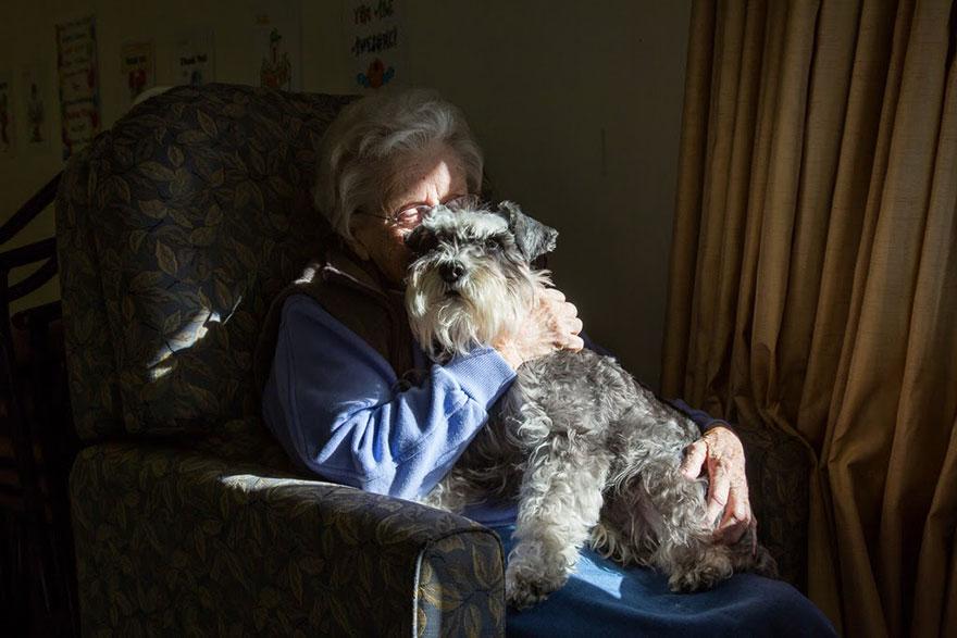 Портреты самых трудолюбивых собак в мире от Эндрю Флейдбо-27