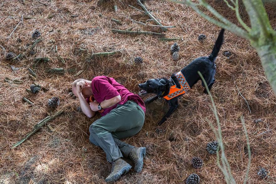 Портреты самых трудолюбивых собак в мире от Эндрю Флейдбо-19