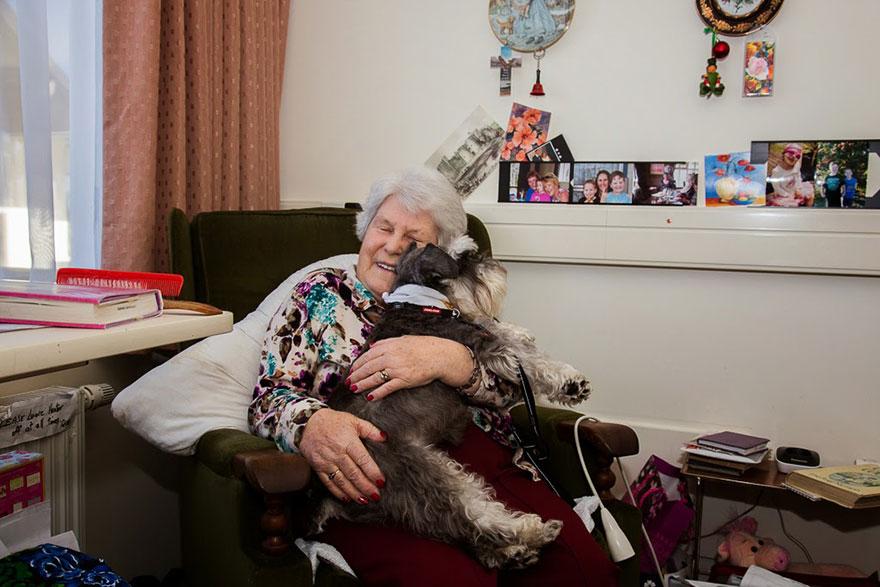 Портреты самых трудолюбивых собак в мире от Эндрю Флейдбо-26