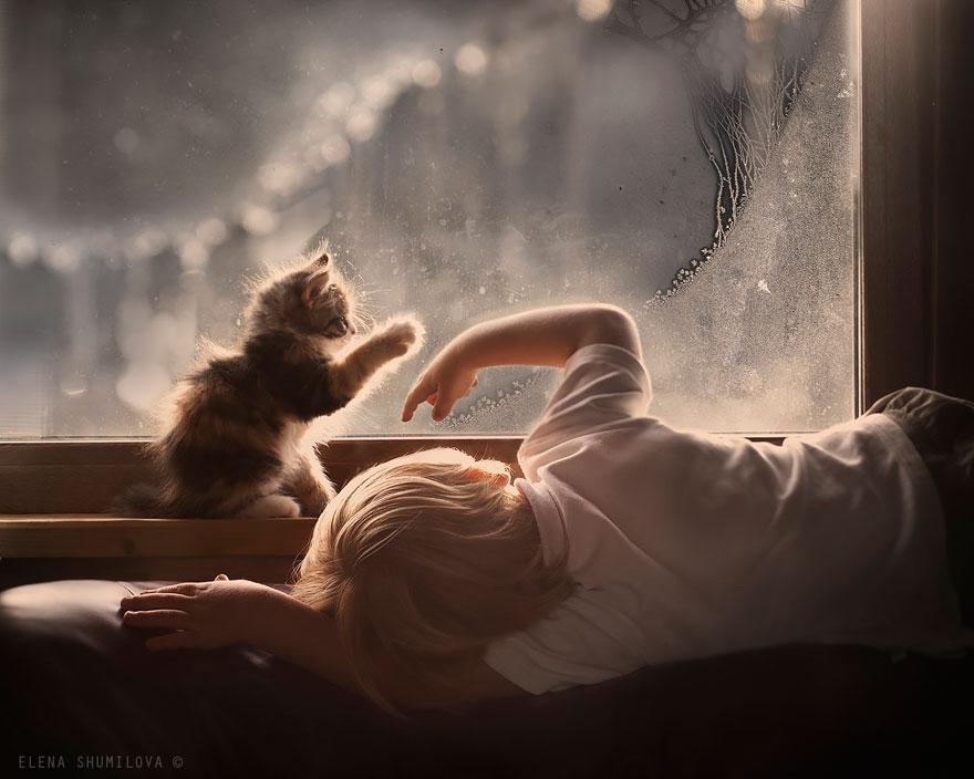 Деревенская идиллия в фотографиях Елены Шумиловой-4