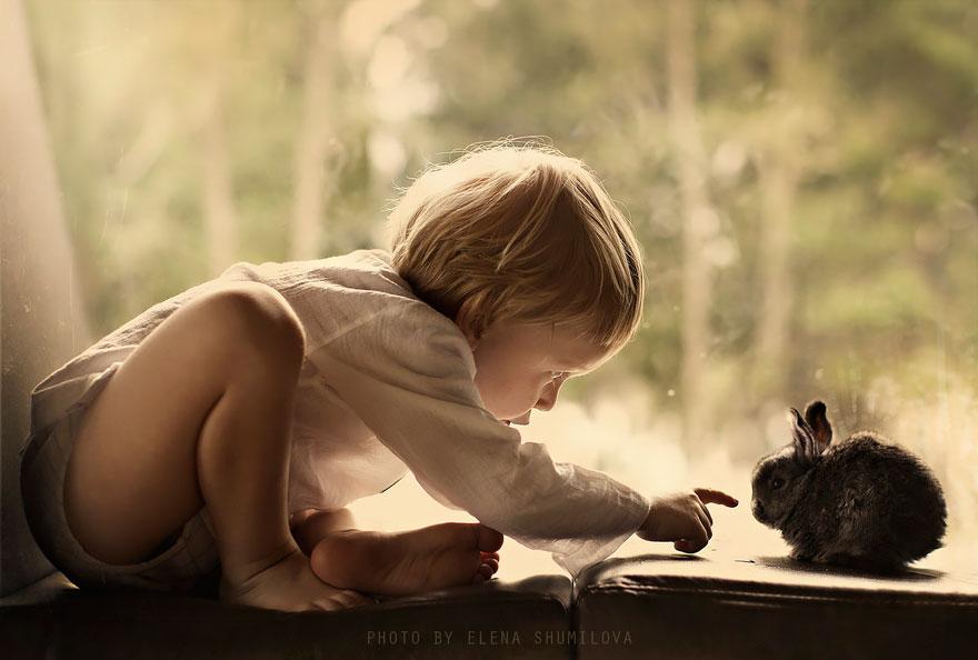 Деревенская идиллия в фотографиях Елены Шумиловой-32