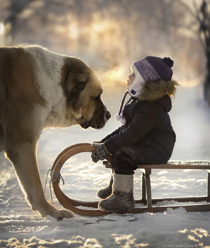 Деревенская идиллия в фотографиях Елены Шумиловой-21