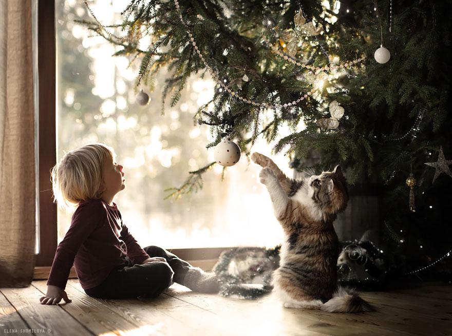 Деревенская идиллия в фотографиях Елены Шумиловой-23