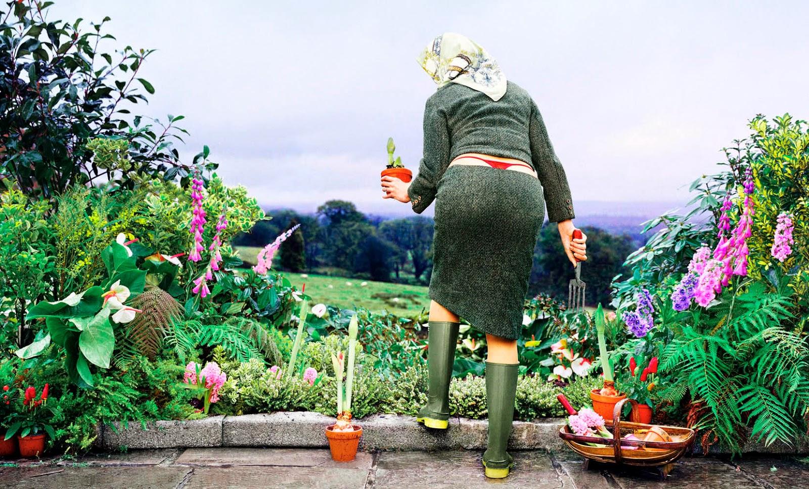 Тарасова картинки, картинки красивой весны дачников цветоводов прикольные