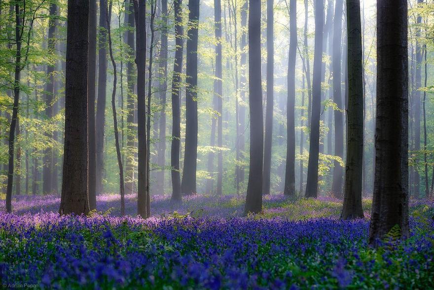46-40 чудесных мест на Земле с удивительными инопланетными пейзажами