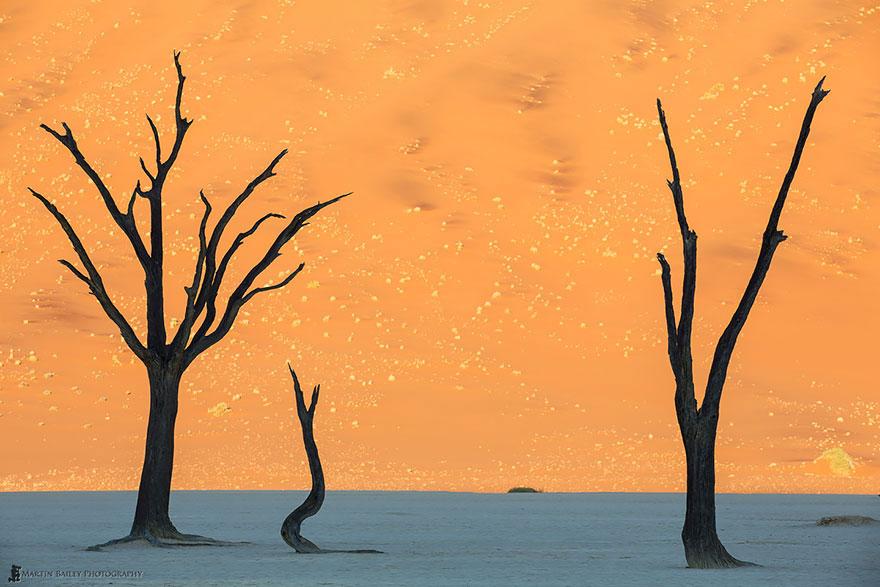 16-40 чудесных мест на Земле с удивительными инопланетными пейзажами