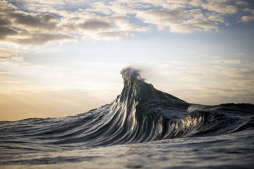 more fotograf Ray Collins 5