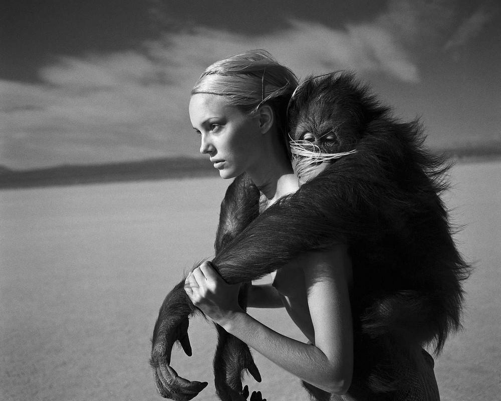 Фотограф Мишель Комте 10