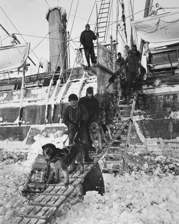Fotografii Imperskoy transantarkticheskoy ekspeditsiey 12