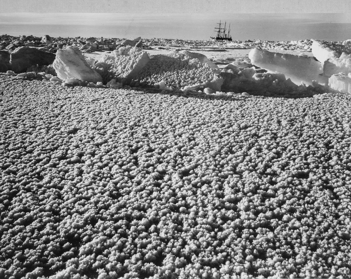 Fotografii Imperskoy transantarkticheskoy ekspeditsiey 36