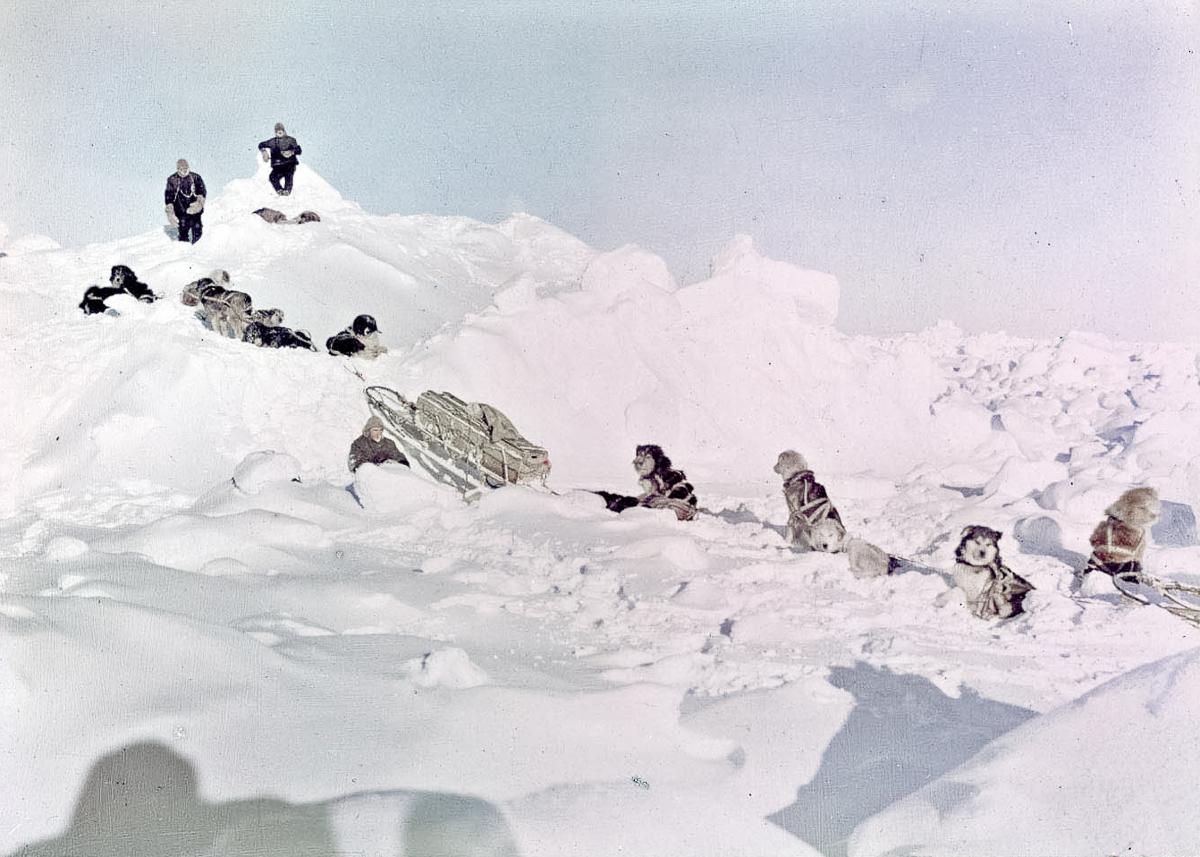 Fotografii Imperskoy transantarkticheskoy ekspeditsiey 44