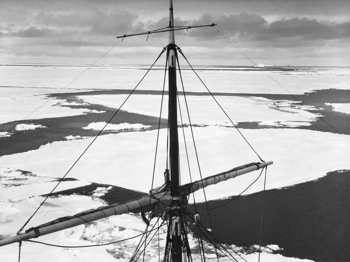 Fotografii Imperskoy transantarkticheskoy ekspeditsiey 7