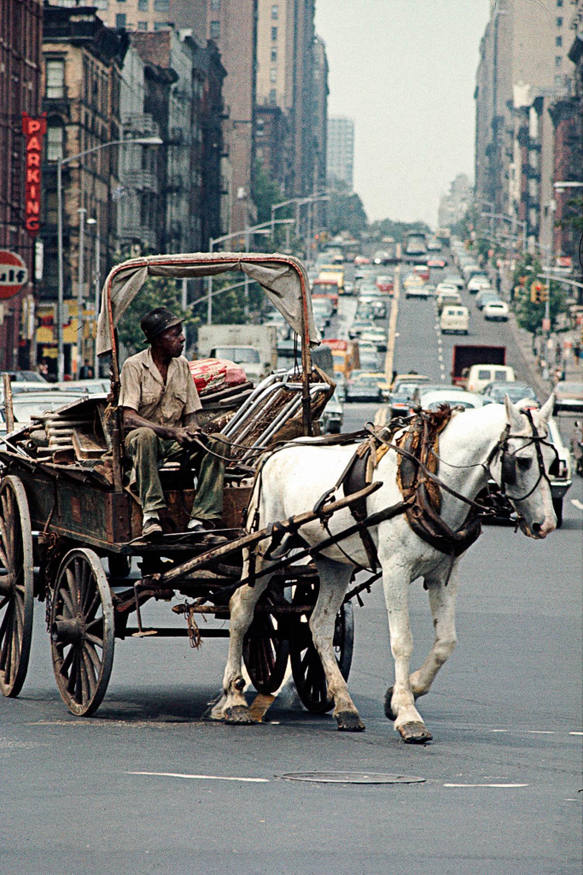 Nyu York fotograf Kamilo Hose Vergara 10