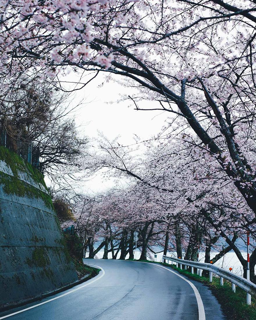 Японский колорит в уличных фотографиях Такаши Ясуи-7